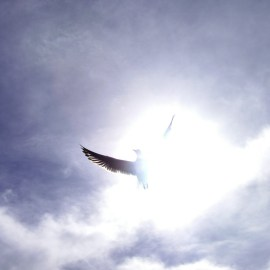 Holy Spirit in sky Wallpaper