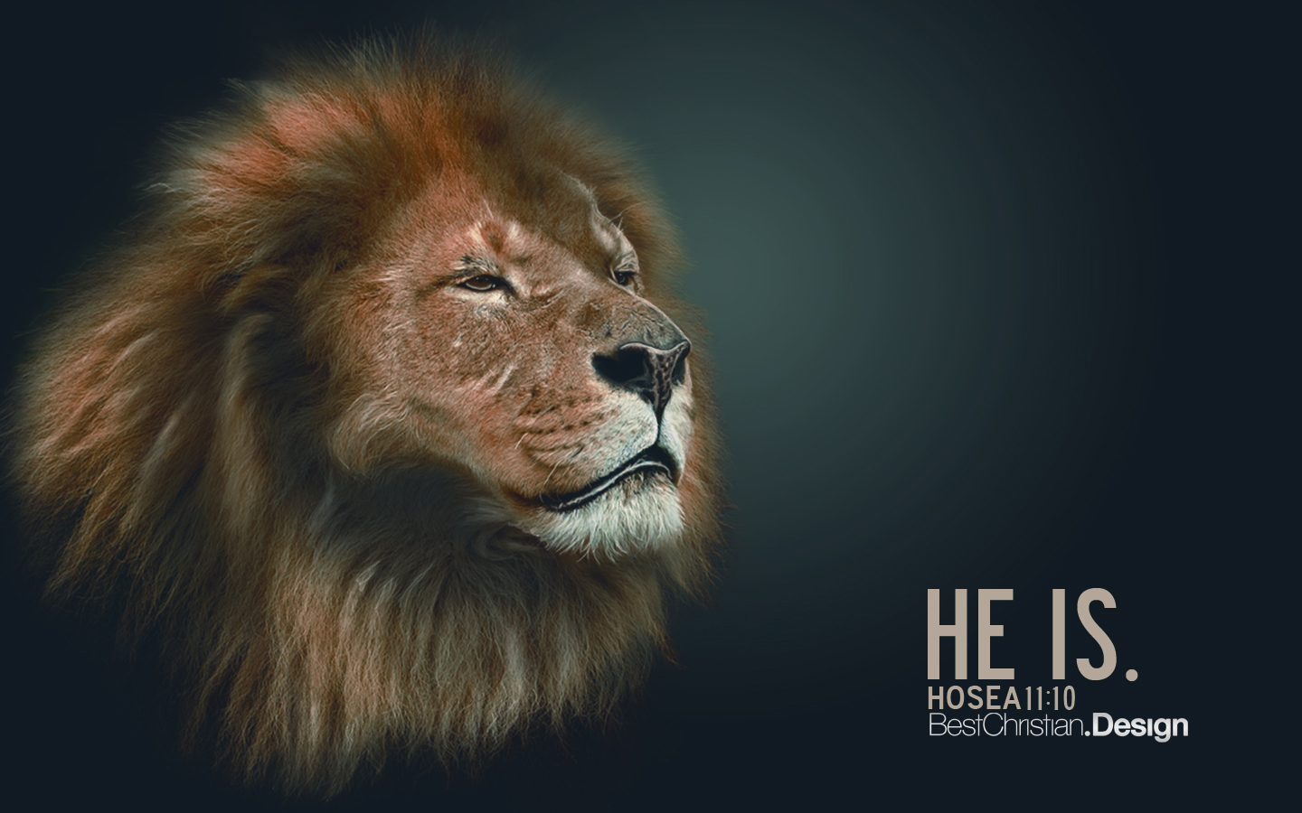 Lion Wallpaper Iphone Hosea 11 10 Wallpaper Christian Wallpapers And Backgrounds