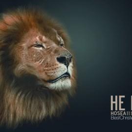 Hosea 11:10 Wallpaper