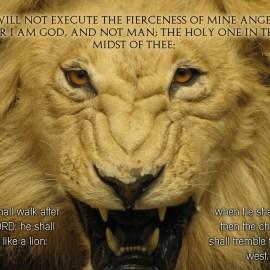 Hosea 11:9-10 Wallpaper