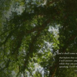 Isaiah 65:24 Wallpaper