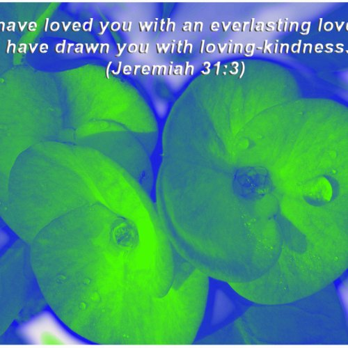 Jeremiah 31:3 christian wallpaper free download. Use on PC, Mac, Android, iPhone or any device you like.