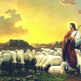 Jesus the pastor Wallpaper