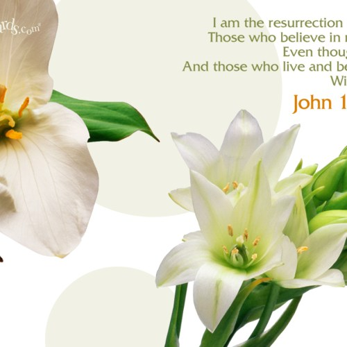 John 11:25-26 christian wallpaper free download. Use on PC, Mac, Android, iPhone or any device you like.