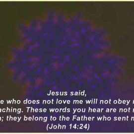 John 14:24 Wallpaper