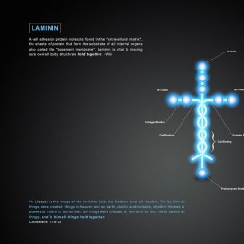 Laminin and Colossians 1:15-20 Wallpaper