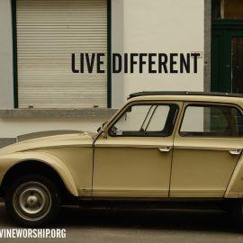 Live Diferent Wallpaper