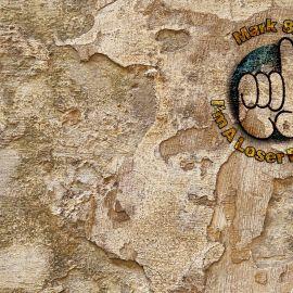 Mark 8:35 – Stone Wallpaper