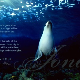 Matthew 12:39-40 Wallpaper