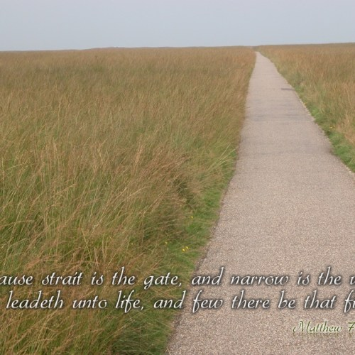 Matthew 7:14 christian wallpaper free download. Use on PC, Mac, Android, iPhone or any device you like.