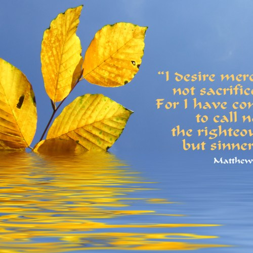 Matthew 9:13 christian wallpaper free download. Use on PC, Mac, Android, iPhone or any device you like.