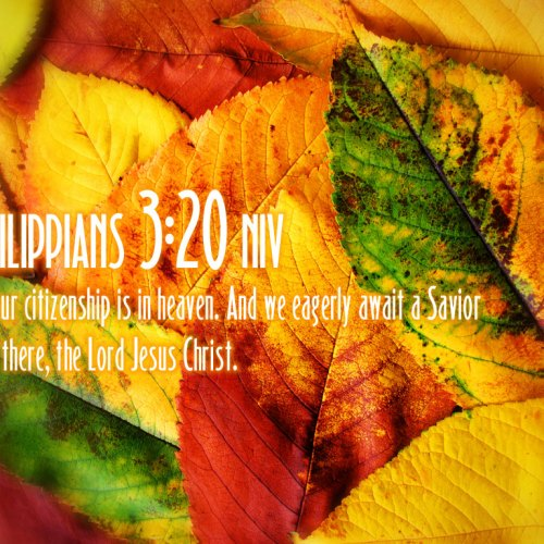 Philippians 3:20 christian wallpaper free download. Use on PC, Mac, Android, iPhone or any device you like.