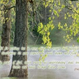Philippians 4:6-7 Wallpaper