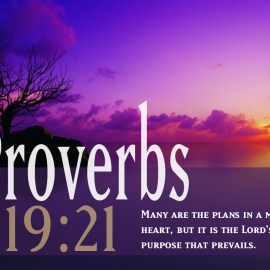 Proverbs 19:21 Wallpaper