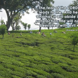 Proverbs 19:23 Wallpaper