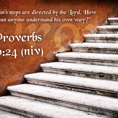 Proverbs 20:24 christian wallpaper free download. Use on PC, Mac, Android, iPhone or any device you like.