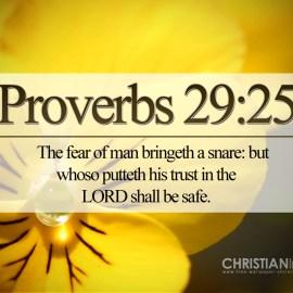 Proverbs 29:25 Wallpaper