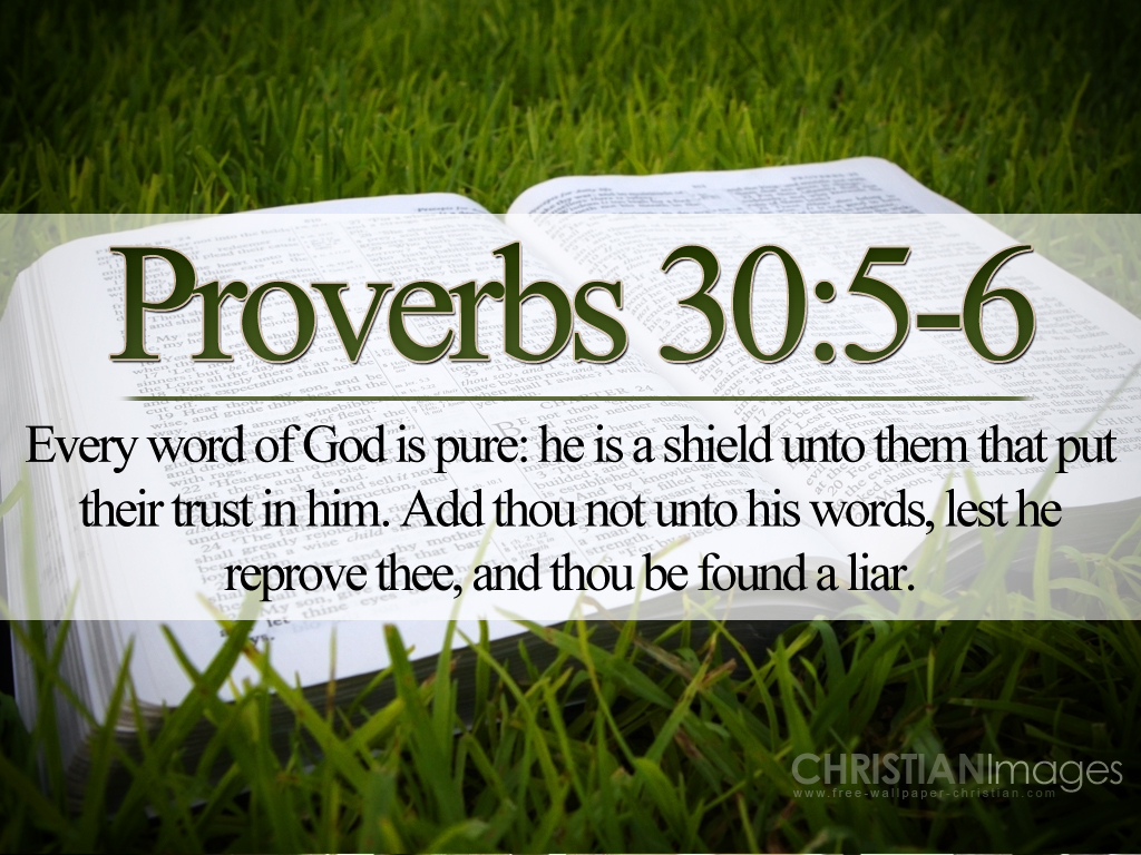 How To Make Wallpaper Fit On Iphone 6 Proverbs 30 5 6 Wallpaper Christian Wallpapers And