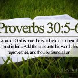 Proverbs 30:5-6 Wallpaper