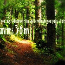 Proverbs 3:6 Wallpaper