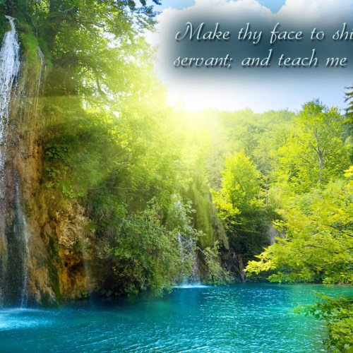 Psalm 119:135 christian wallpaper free download. Use on PC, Mac, Android, iPhone or any device you like.