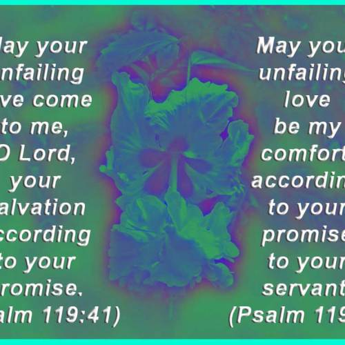 Psalm 119:41,76 christian wallpaper free download. Use on PC, Mac, Android, iPhone or any device you like.