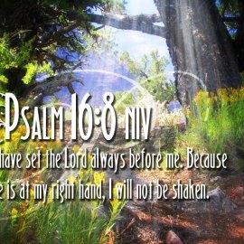Psalm 16:8 Wallpaper