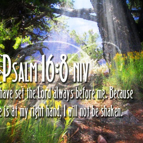 Psalm 16:8 christian wallpaper free download. Use on PC, Mac, Android, iPhone or any device you like.