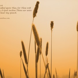 Psalm 17:6 Wallpaper