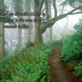 Psalm 34:8 Wallpaper