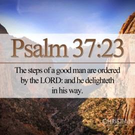 Psalm 37:23 Wallpaper