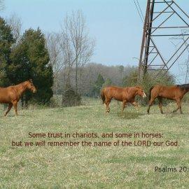 Psalms 20:7 Wallpaper