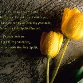 Psalms 51:10-12 Wallpaper