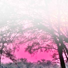Sky pink Wallpaper