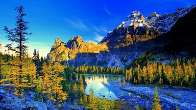 8K Ultra HD Nature Wallpapers - Top Free 8K Ultra HD Nature Backgrounds - WallpaperAccess