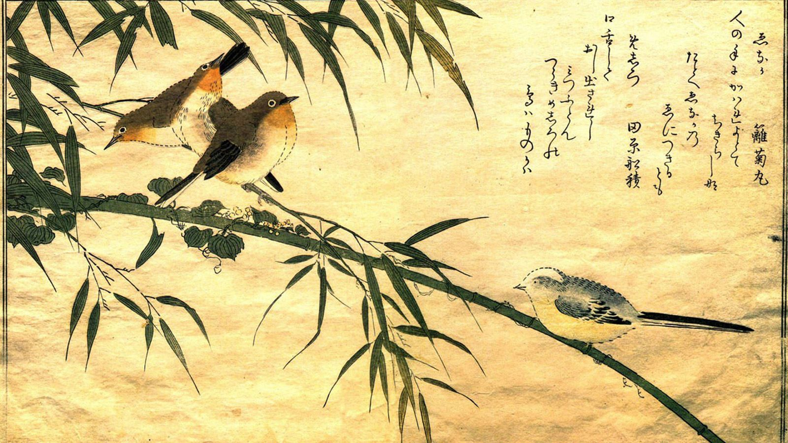 Koi Fish 3d Wallpaper Free Download 72 Best Free Traditional Japanese Art Wallpapers
