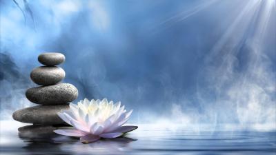 Zen Lotus Wallpapers - Top Free Zen Lotus Backgrounds - WallpaperAccess