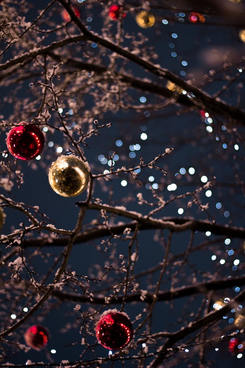Christmas Photography Wallpapers Top Free Christmas Photography Backgrounds Wallpaperaccess