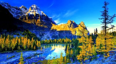 HP 4K Ultra HD Wallpapers - Top Free HP 4K Ultra HD Backgrounds - WallpaperAccess