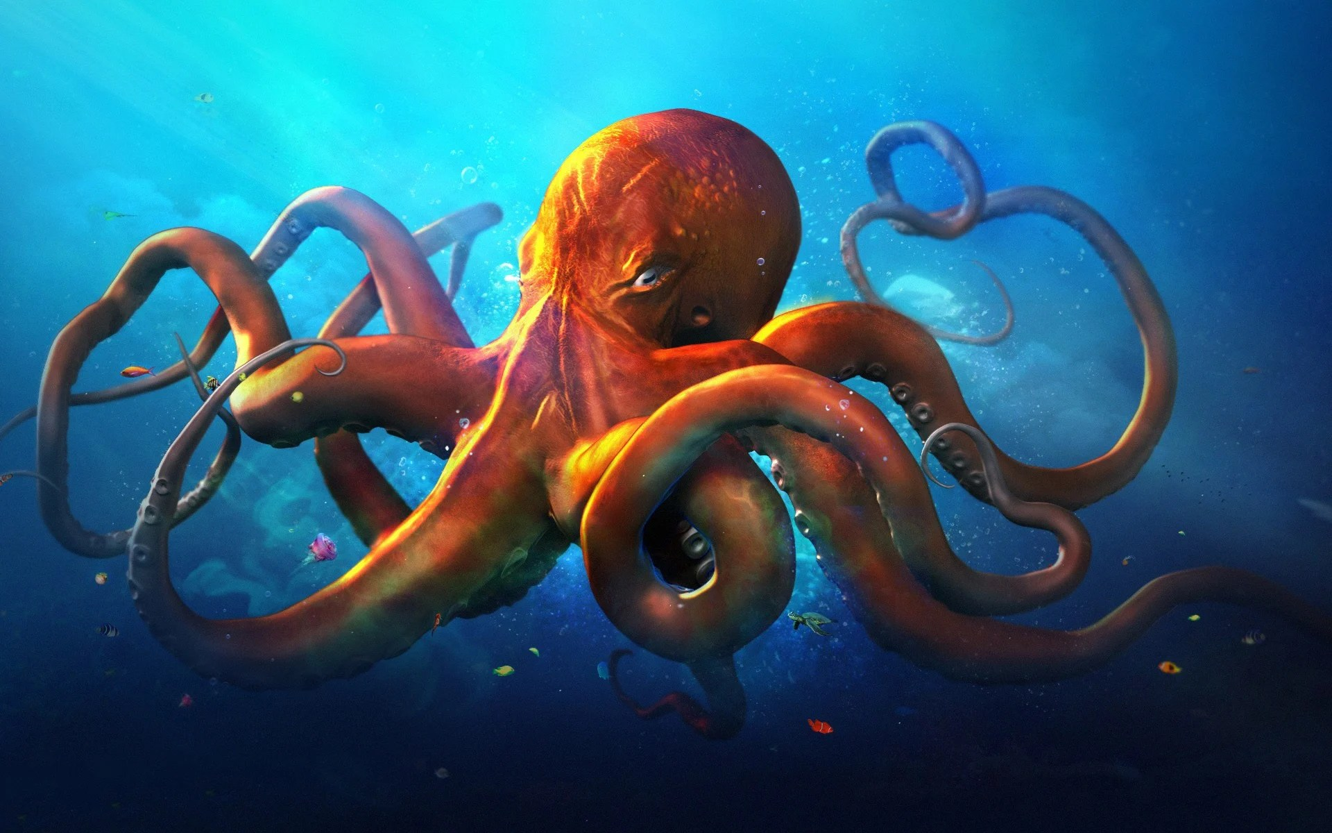 Cool Octopus Art Octopus Wallpapers Top Free Octopus Backgrounds Wallpaperaccess