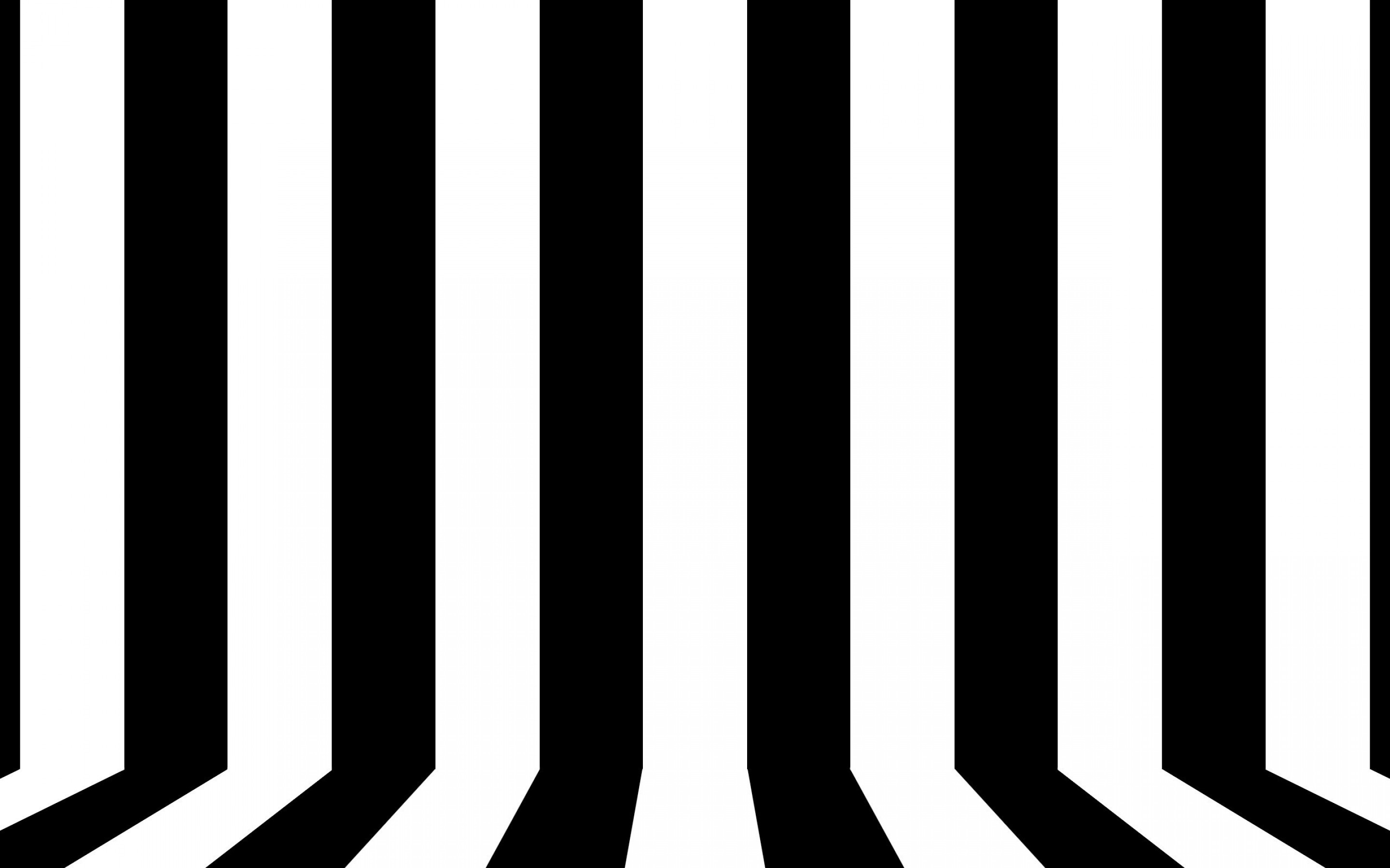 Line White Black And White Lines Wallpaper Vector And Designs