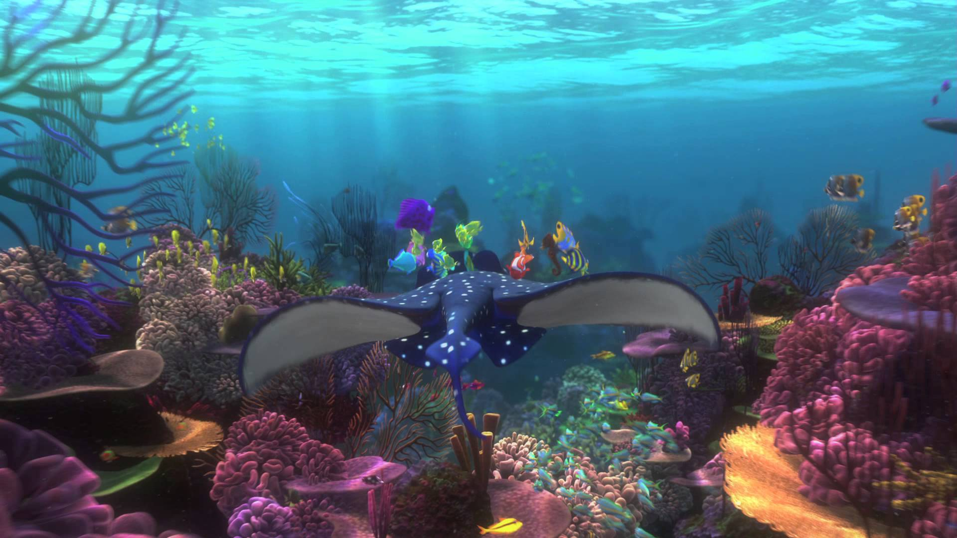 3d Wallpaper Live Fish Finding Nemo Backgrounds Wallpaper Cave