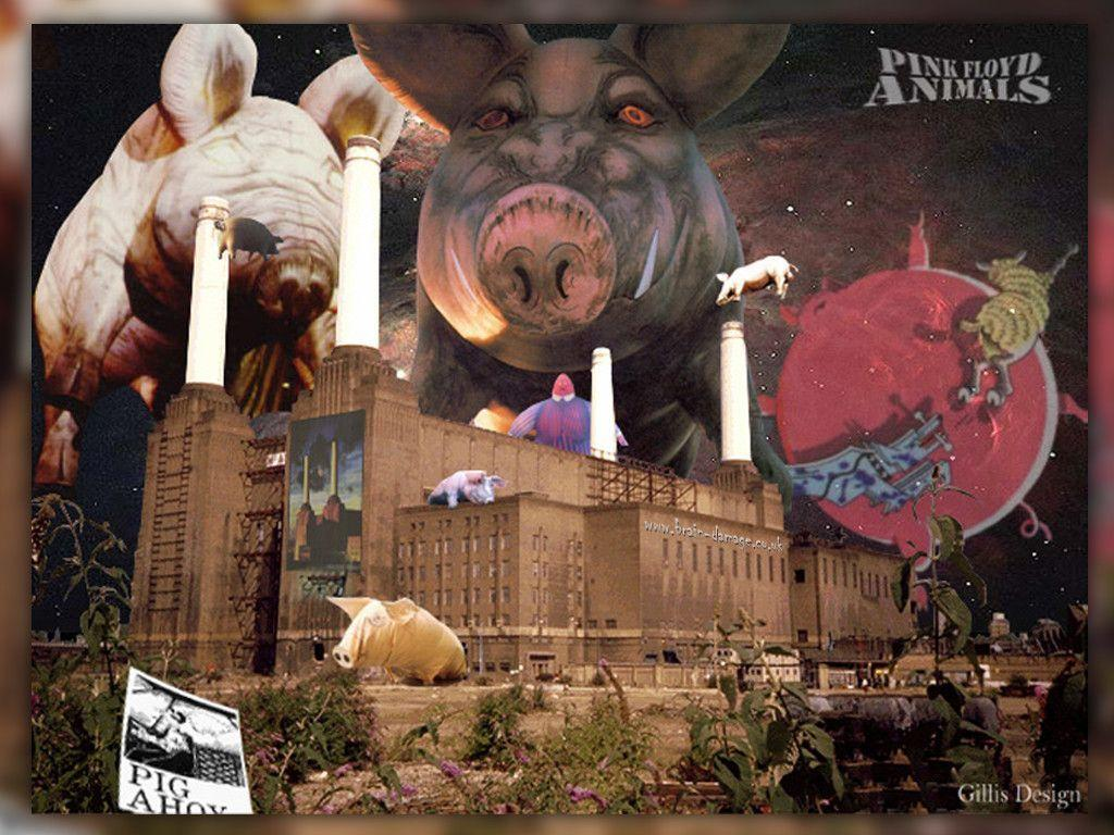 Pink Floyd Animals Wallpaper Pink Floyd Animals Wallpapers Wallpaper Cave