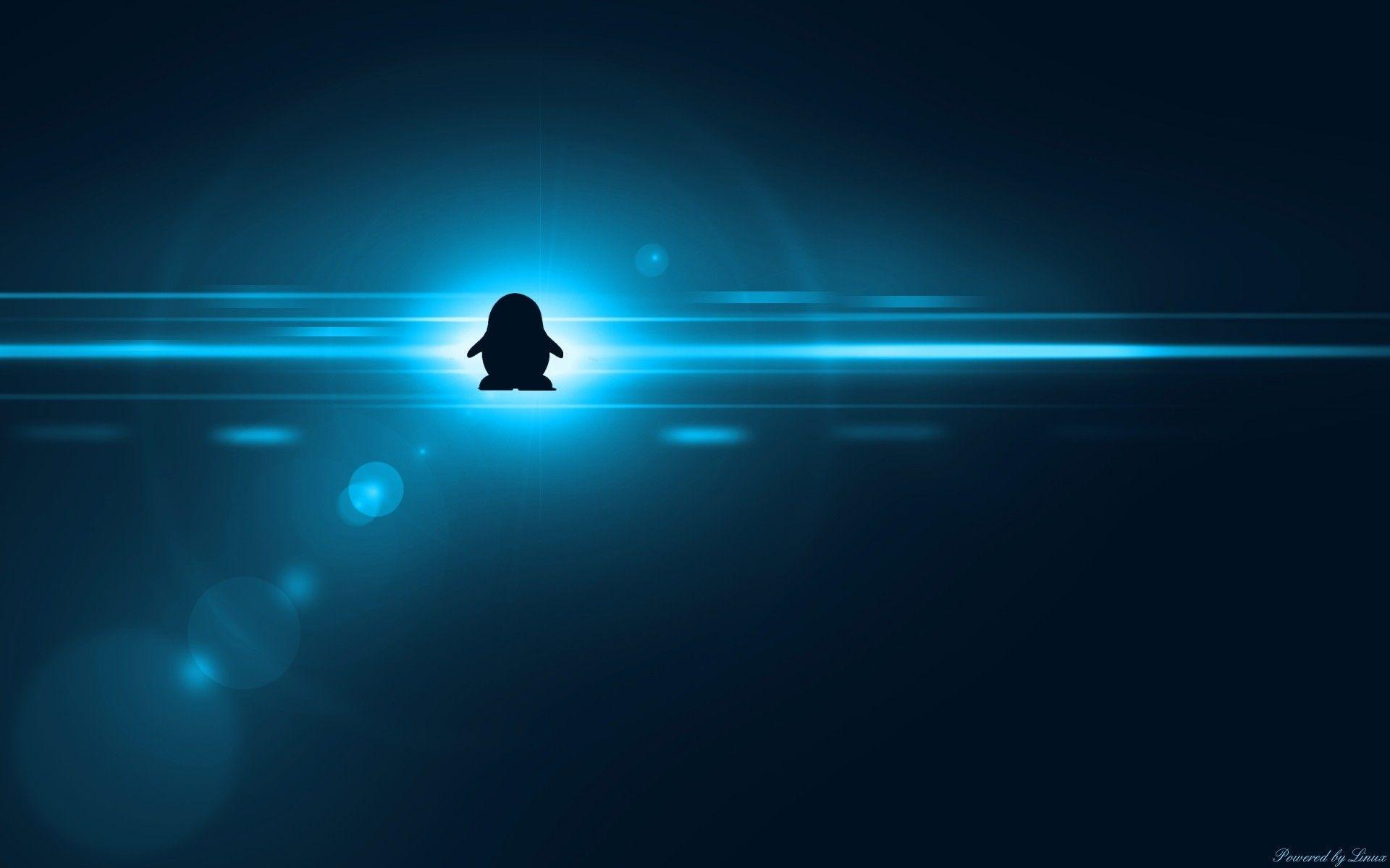 Awesome 3d Wallpapers Free Download Fedora Linux Wallpapers Wallpaper Cave