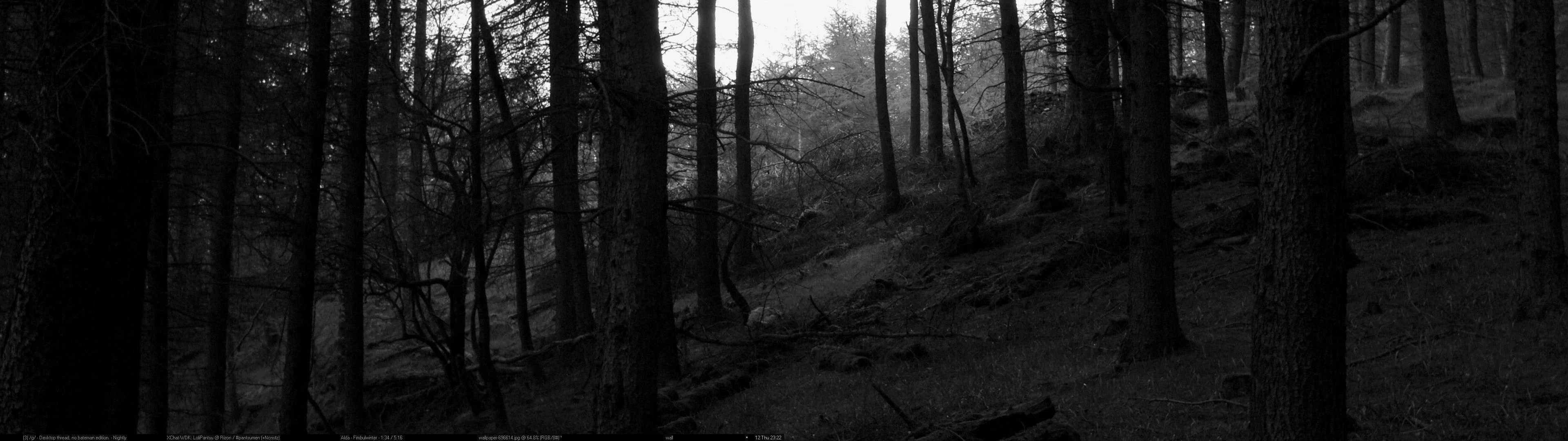 Dark Fall Iphone Wallpaper Black Forest Wallpapers Wallpaper Cave