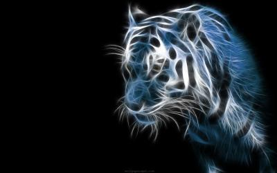 Cool Backgrounds Of Animals - Wallpaper Cave