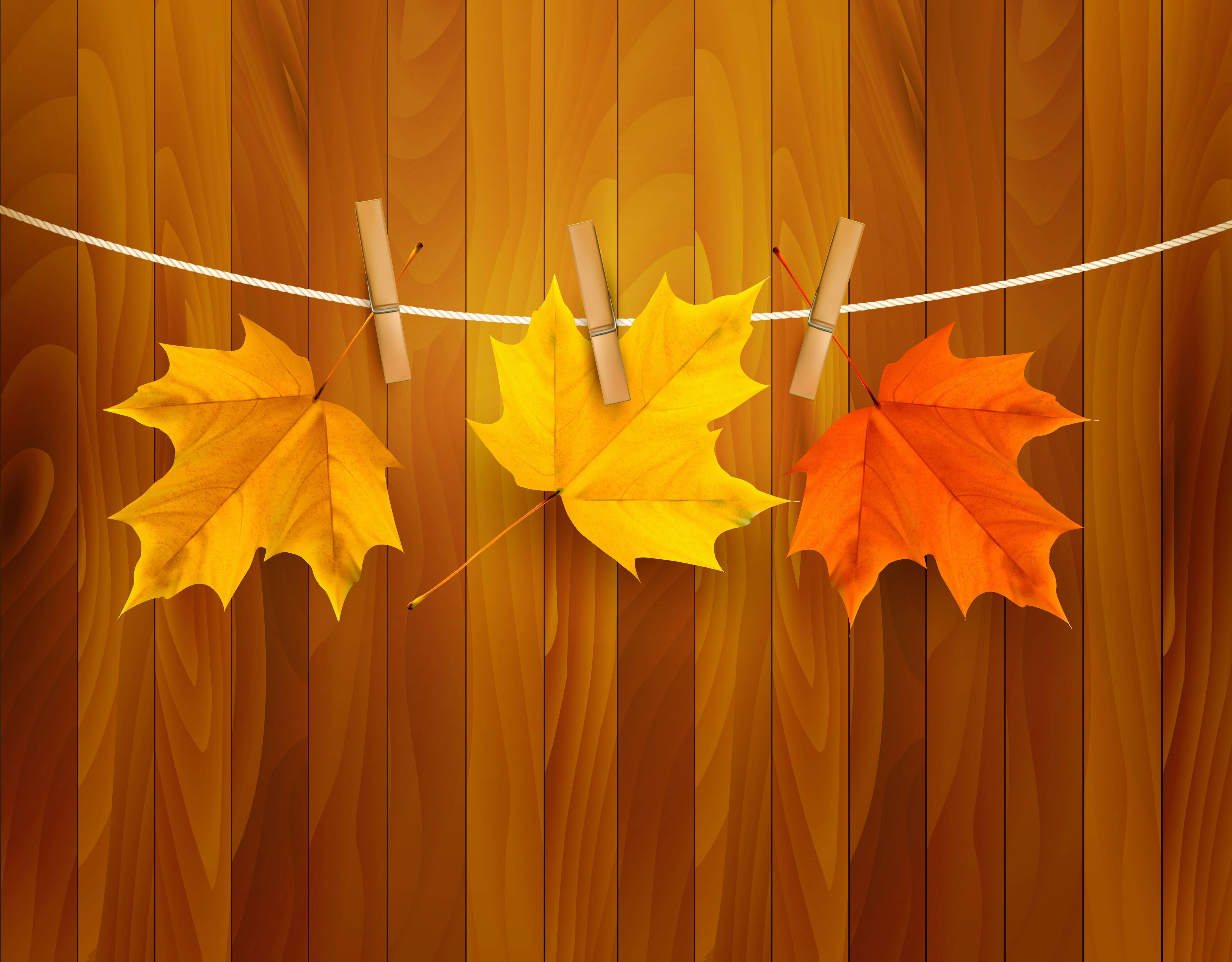 Fun Fall Desktop Wallpaper Fall Leaves Backgrounds Wallpaper Cave