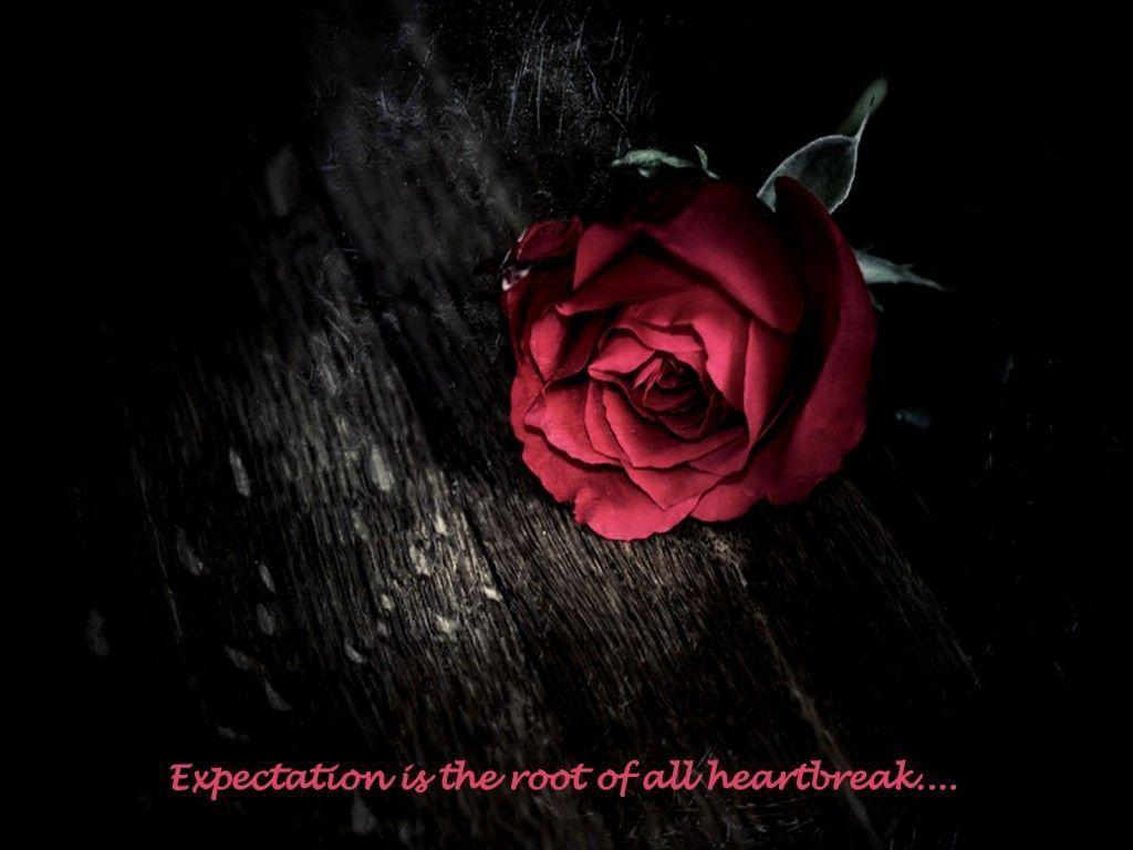 Expectations Quote Wallpapers Heartbreak Wallpapers Wallpaper Cave