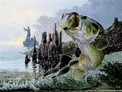 Fishing Wallpapers - Wallpaper Cave