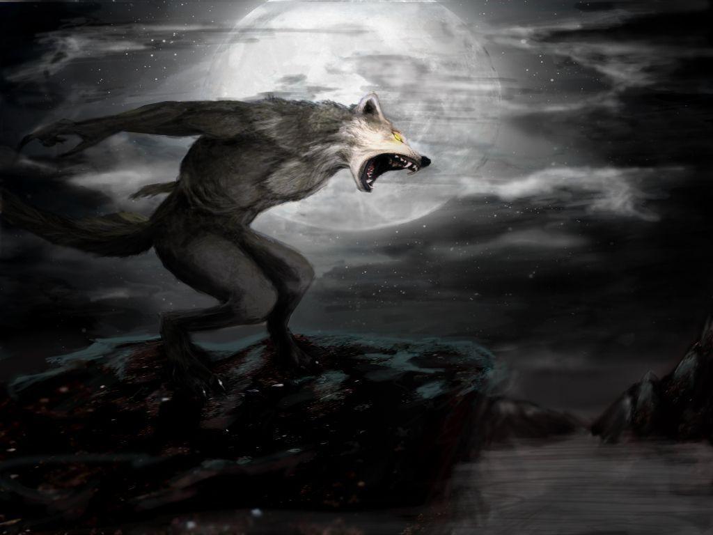3d Mahadev Shiva Live Wallpaper Werewolf Backgrounds Wallpaper Cave